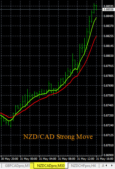 NZD/CAD Short Term Buy Signal 5-31-2016