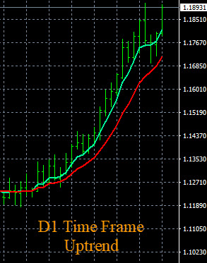 Currency Strength Indicator D1