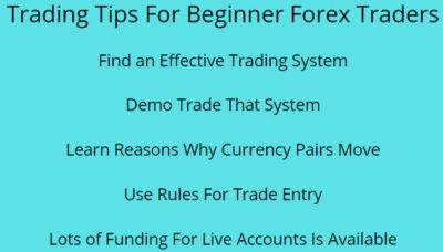Trading Tips For Beginner Forex Traders